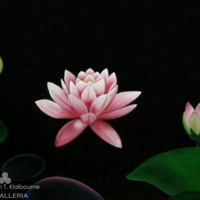 Lotus Flowers, Oil Painting